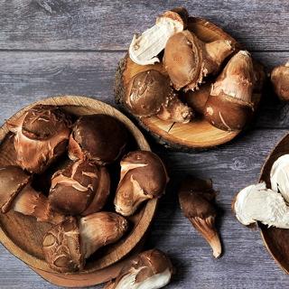 [티몬균일가] 기름장에 찍어먹는 국내산 참송이버섯/표고버섯