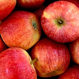 [라스트위크] 10분어택 경북 꿀당도 부사사과 2kg 소과 180g내외  / 2개 구매시 4.5kg 발송