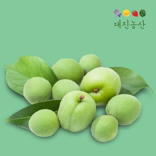 [티몬균일가] 하동 초록 매실 10kg