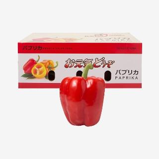 [대용량]파프리카(빨강) 2.5kg / 5kg1박스